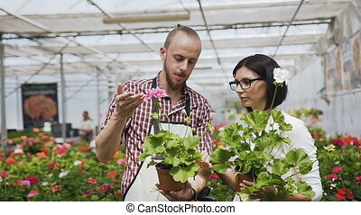A Young Florist picks flowers from her shop's array and a female shopper decides to purchase them. Large greenhouse of flowers, beautiful people with natural light