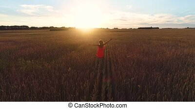 A young girl in a dress running through a field of wheat at sunset . Shooting from a drone. Sports outdoors