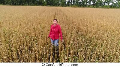 A young girl running through the field of wheat. Shooting from a drone. Sports outdoors