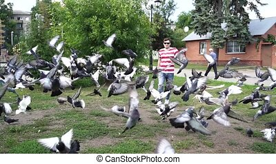 A young handsome man in casual clothes is dispersing pigeons...