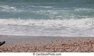 A young men walks along the beach