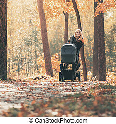 A young mother with a stroller walks through the autumn park