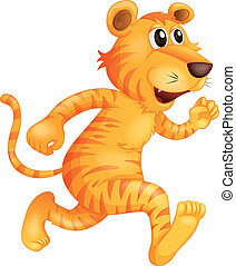 A young tiger running