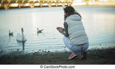 A young woman feeding on a lake swans and ducks Bird feeding in winter