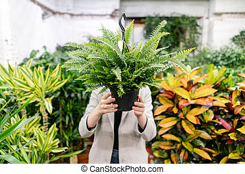 A young woman holding a Nephrolepis plants, fern, chooses a ...