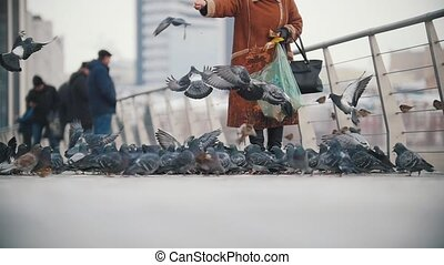 A young woman in coat feeding pigeons.