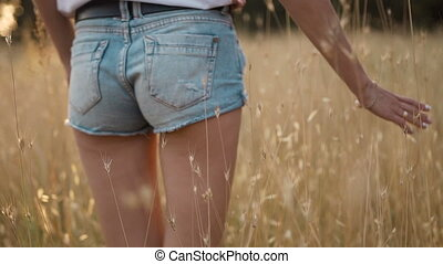 A young woman in short shorts in the sunset goes on a wheat field and handles wheat