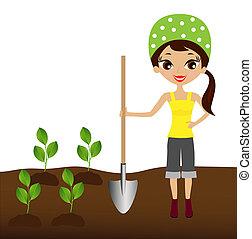 woman plants a nursery transplant - a young woman plants a...