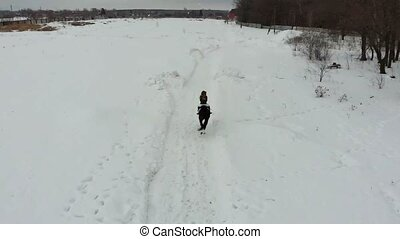 A young woman riding a horse on a snowy field. Back view....
