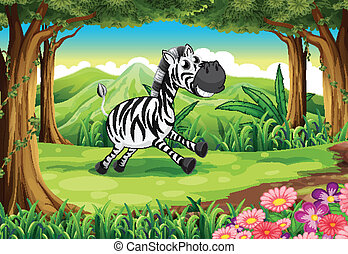 A zebra at the forest