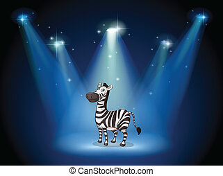 A zebra at the stage with spotlights