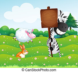 A zebra holding an empty wooden signboard at the hill