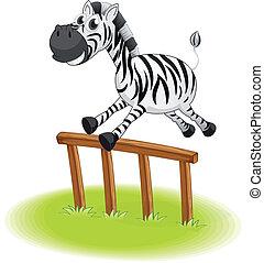 A zebra jumping