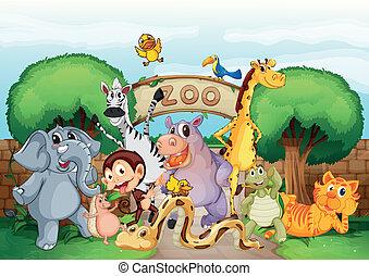 a, zoo, und, der, tiere