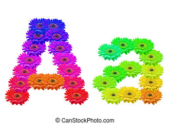 Aa - Daisy Upper and Lower Case A isolated with clipping...