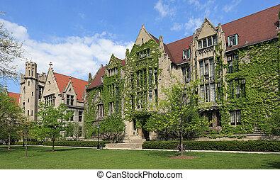 aantrekkelijk, universiteit universiteitsterrein