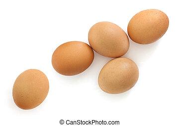 aanzicht, bovengronds, bruine , eitjes, vrijstaand, witte