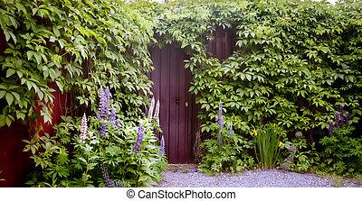 aanzicht, concept, nieuw, mysterieus, muur, leven, wijngaarden, groene, ingang, begin, bedekt, of, panoramisch, baksteen