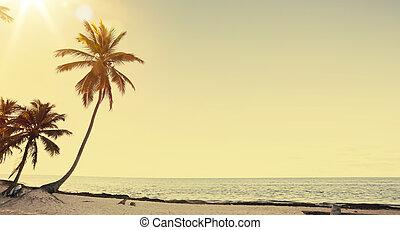 aanzicht, kunst, achtergrond, mooi, kust, retro