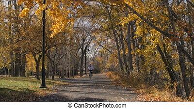 aanzicht, rijdende fiets, kaukasisch, man, 4k, park.,...