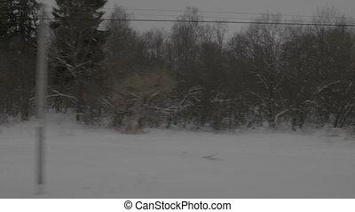 aanzicht, van, sneeuw, bomen, van, venster, verhuizing, trein