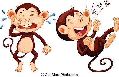 aap, het schreeuwen, lachen