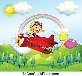 aap, twee, schaaf, paardrijden, ballons, rood
