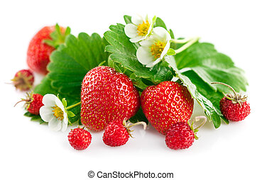 aardbei, bloem, blad, groene, fris