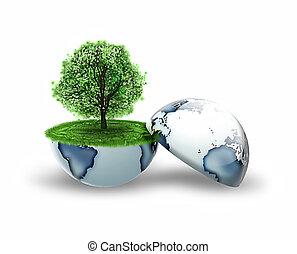aarde, binnen, boompje