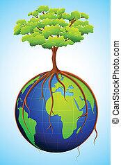 aarde, boompje
