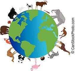 aarde, dieren
