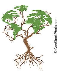 aarde, groen boom