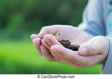 aarde, in, ons, handen