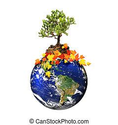 aarde, met, een, boompje, vrijstaand, op, een, witte achtergrond