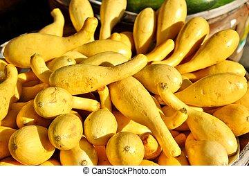 abóbora amarela