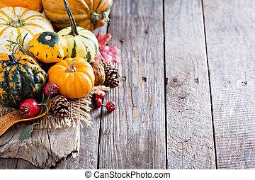 abóboras, squash, variedade