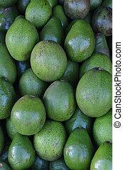 abacate, fruta