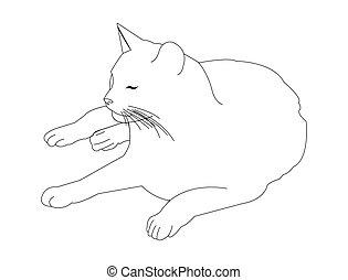 abajo, arte de línea, acostado, gato