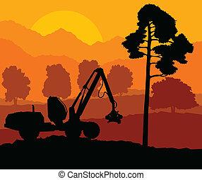 abajo, madera, corte, bosque, paisaje