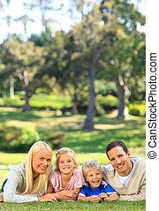 abajo, parque, acostado, familia
