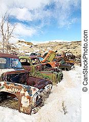 abandonado, coches, en, junkyard