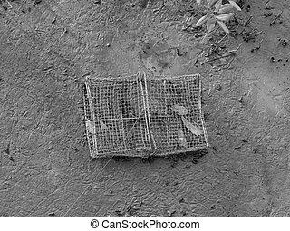 abandonado, fangoso, bosque, mangle, red, jaula, suelo