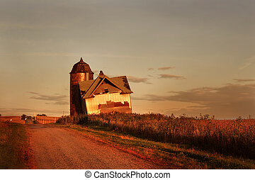 abandonado, fazenda