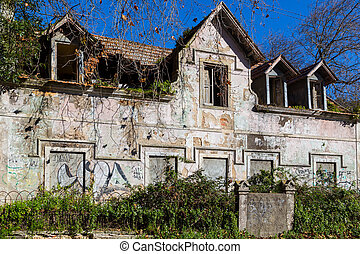 abandonded old house with plants