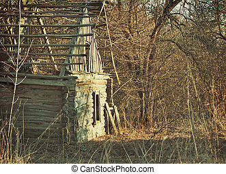 Abandoned and ruined house in an overgrown forest .