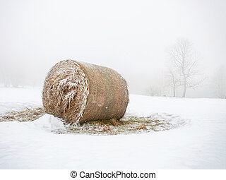 Abandoned bales of hay laying in the snow on farm field. Single tree