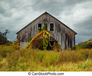 abandoned barn in autumn