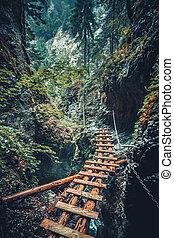 Abandoned bridge in the Tatra Mountains, Slovakia.