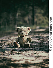 abandoned brown teddy bear sitting in the middle of the forest in the evening
