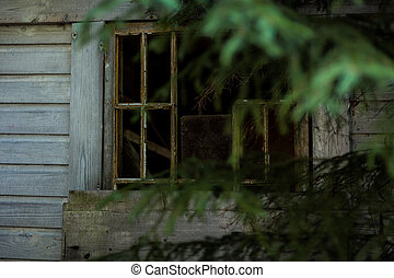 Abandoned cabin in the woods window